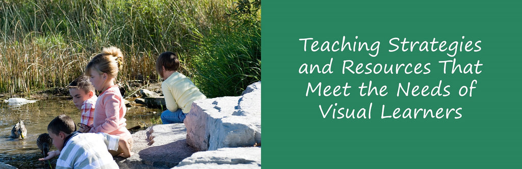 Teaching Strategies and Resources That Meet The Needs of Visual Learners