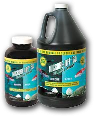 Microbe-Lift SA - Gallon