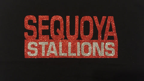 Sequoya Stallions Bling (Youth)