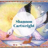 Shannon Cartwright Artwork