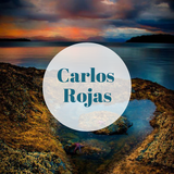 Carlos Rojas Artwork