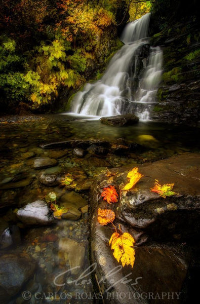 VALDEZ AUTUMN WATERFALL