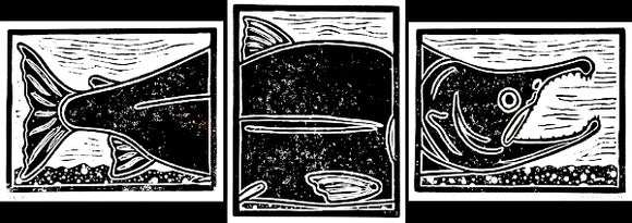 FULL CYCLE TRIPTYCH SALMON WOOD BLOCK PRINT