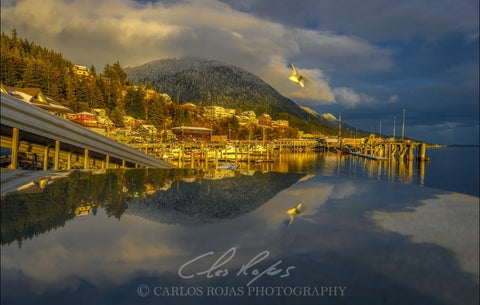 KETCHIKAN FLY BY 12x18 ON METAL