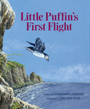 LITTLE PUFFINS FIRST FLIGHT