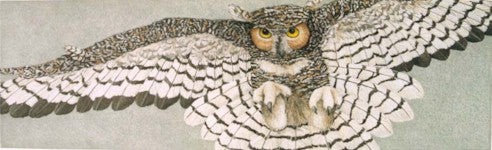 GREAT HORNED OWL ETCHING