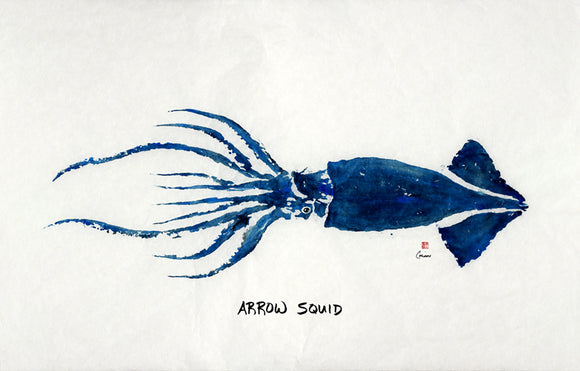 ARROW SQUID GYOTAKU