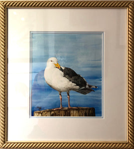 HARBOR SENTINEL ORIGINAL WATERCOLOR FRAMED