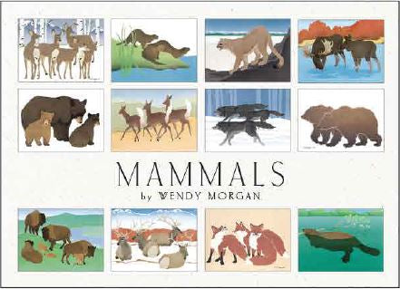 ALASKA MAMMALS ASSORTED CARD SET