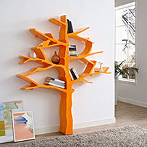 KNOWLEDGE BOOKCASE