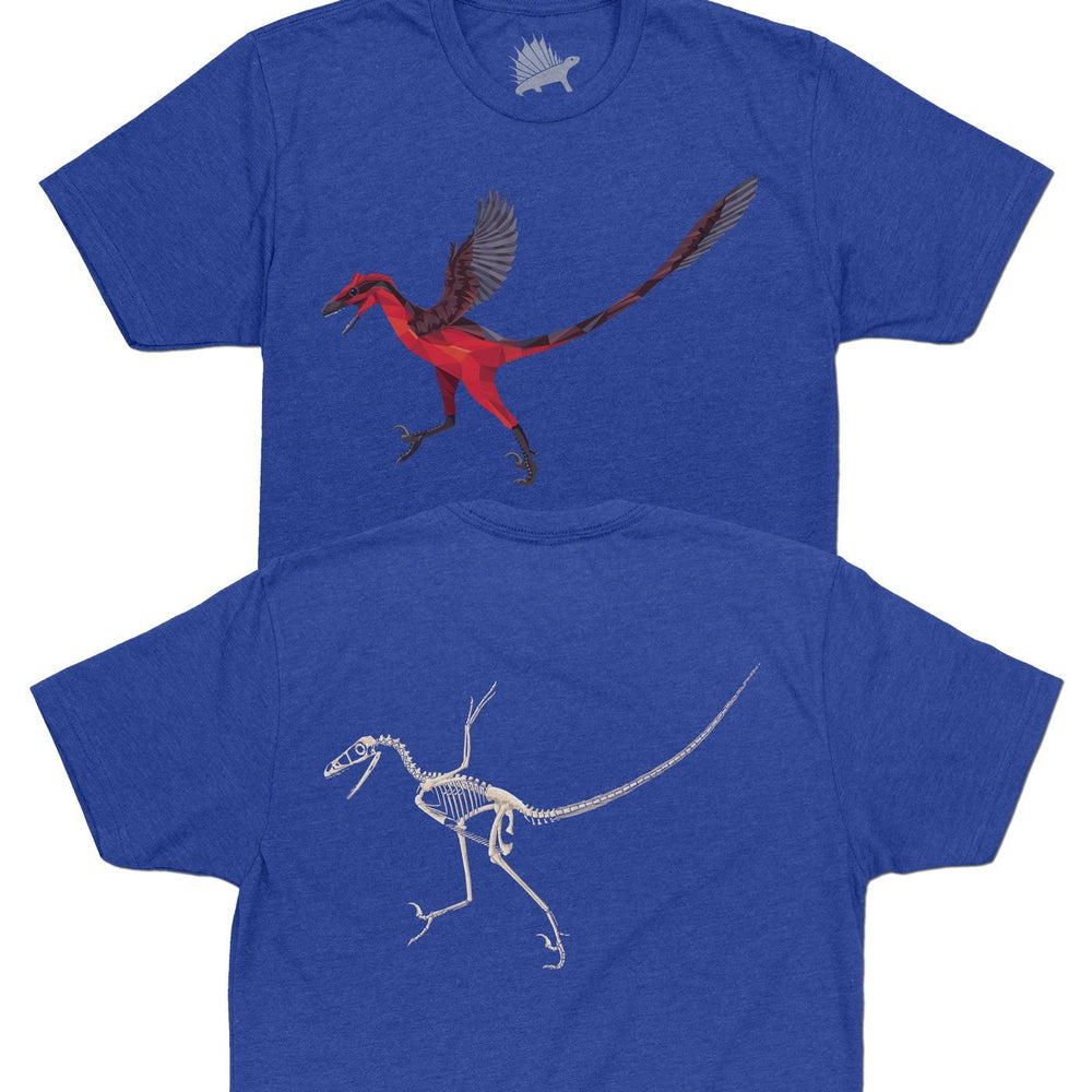 Bambiraptor Fossil Fusion™ Adult Dinosaur T-Shirt Royal Blue - Permia