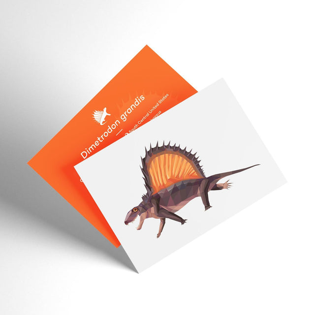 Dimetrodon 3D Collectible X-Ray Dinosaur Card Permia