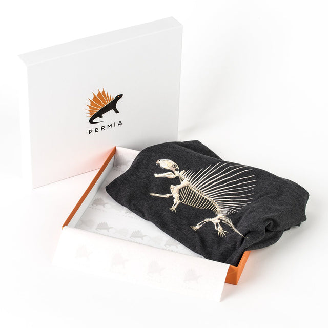 Permia Signature Dinosaur Gift Box Package