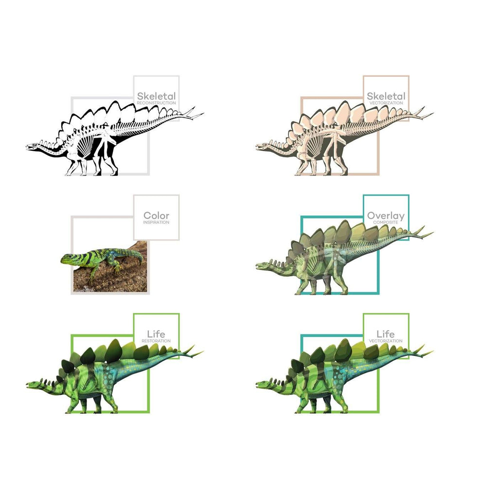 Stegosaurus Art Evolution