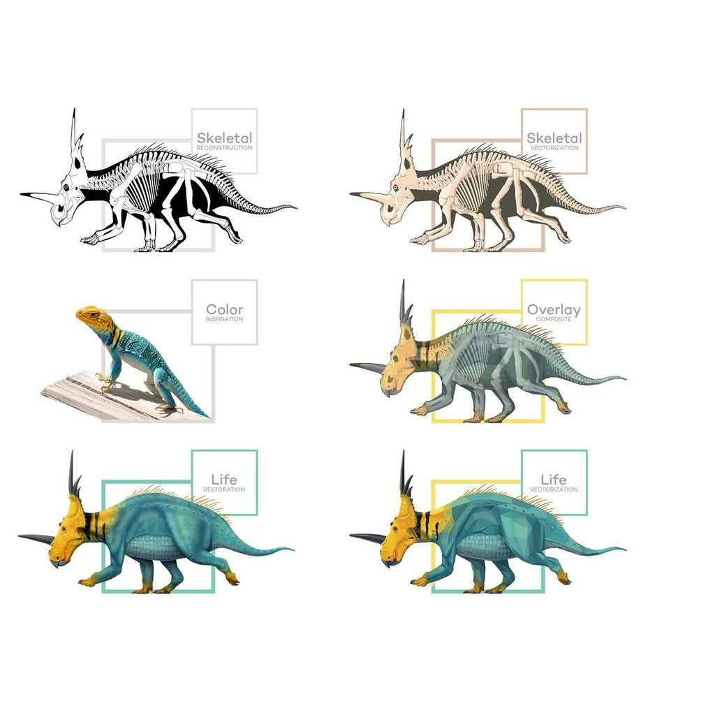 Styracosaurus Science Behind the Art Evolution Process Skeletal Life Permia