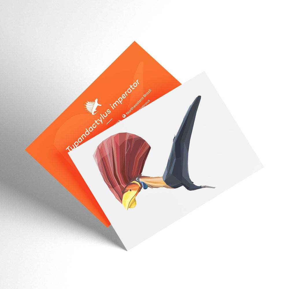 Tupandactylus X-Ray 3D Collectible Pterosaur Card  - Permia