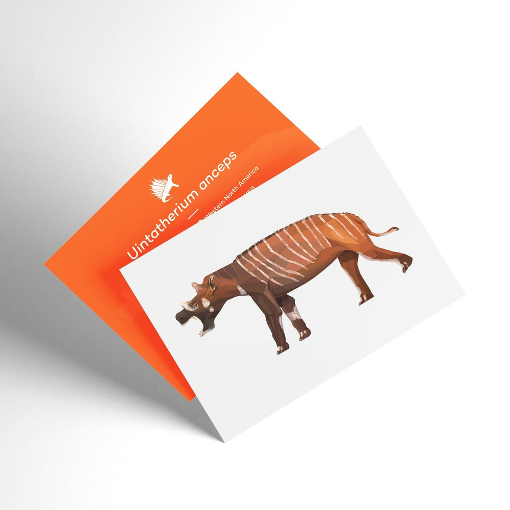 Uintatherium X-Ray 3D Collectible Mammal Card  - Permia
