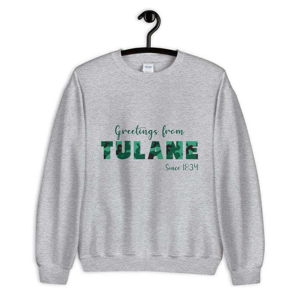 *Any College* Greetings From Crewneck