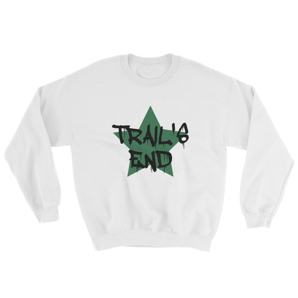 Load image into Gallery viewer, *Any Camp* Big Star Sweatshirt