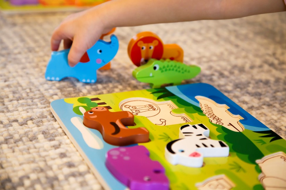 Why Wooden Toys Are Safer Than Plastic Toys