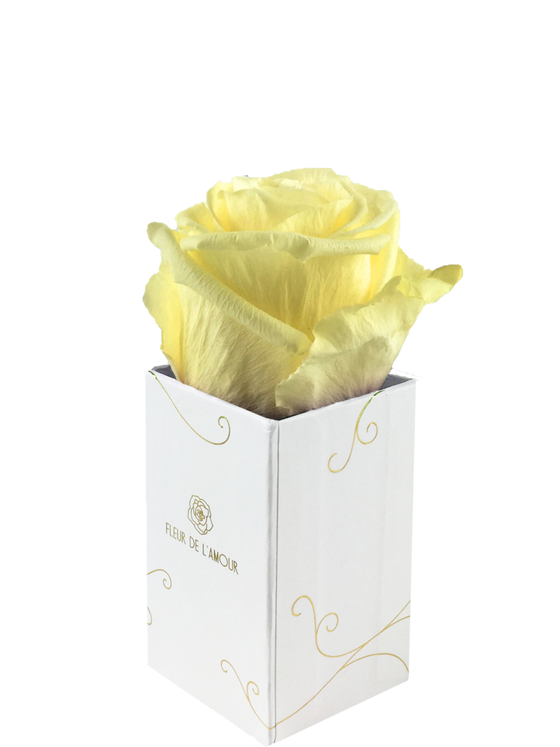 Everlasting Bloom Individuel - White Box - Guaranteed to Last Years