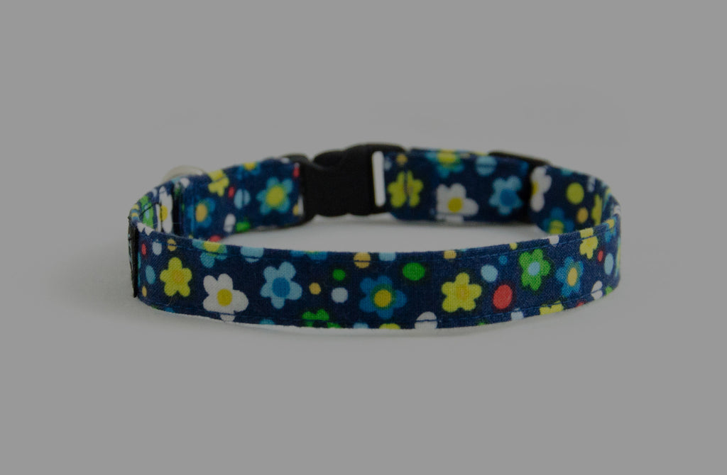 Extra Small Dog Collars