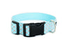 Buckle Dog Collar in Sam