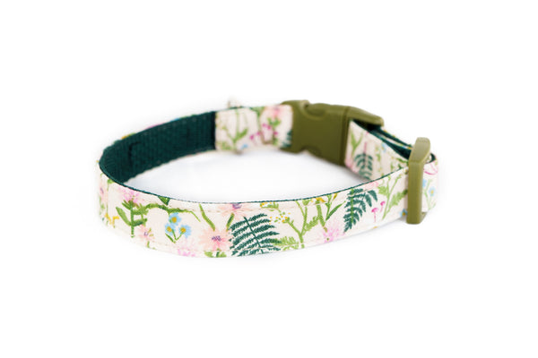 Buckle Dog Collar in Sadie