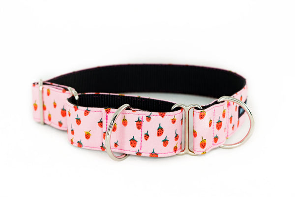 Martingale Collar in Mojo