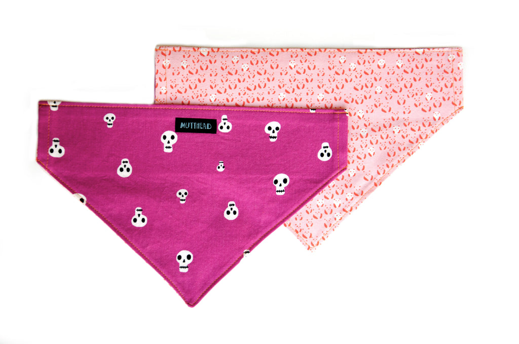 Reversible Bandana in Claytie and Nellie