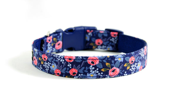 Buckle Dog Collar in Sophie