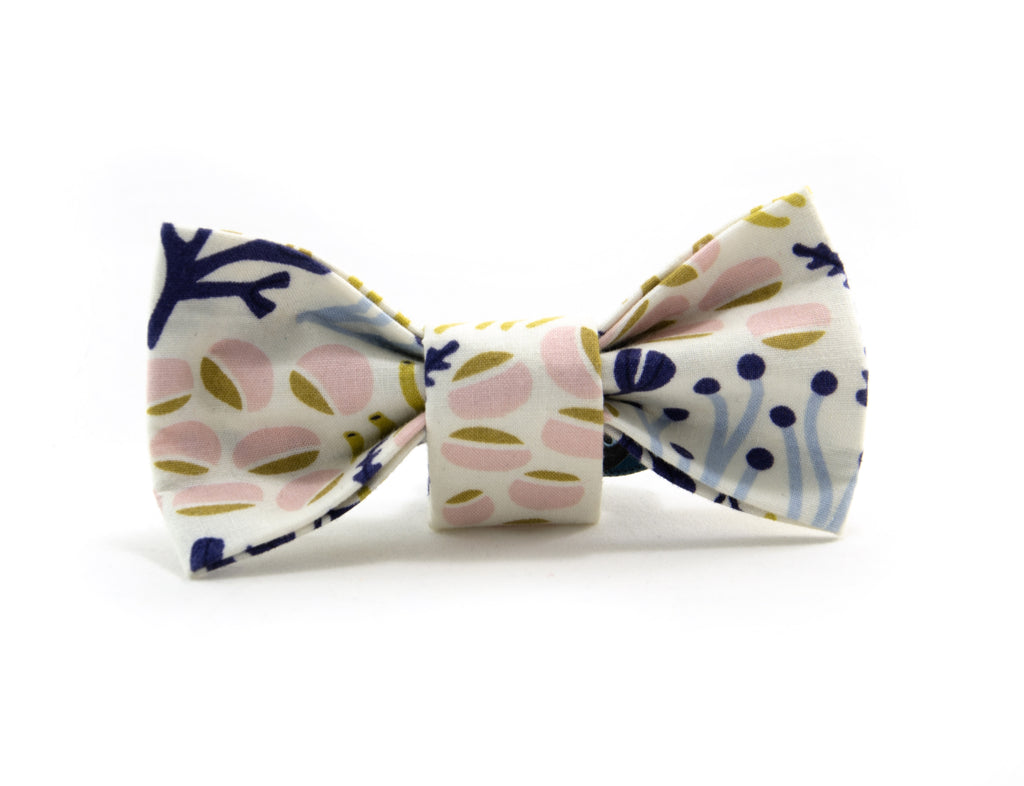 Bow Tie in Bulle