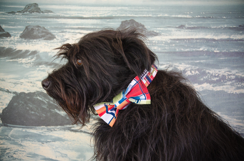 Dog collar and bow tie set: Captain, a cheerful madras plaid