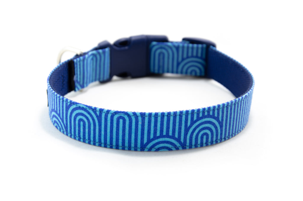 Buckle Dog Collar in Guinness (Blue)