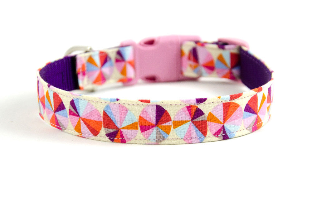 Buckle Dog Collar in Belle