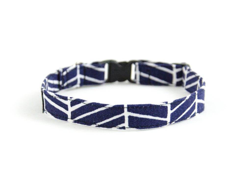Cat collar in Bishop
