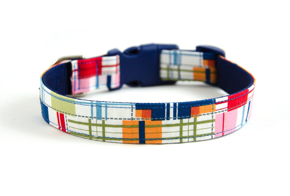 Buckle Dog Collar in Captain