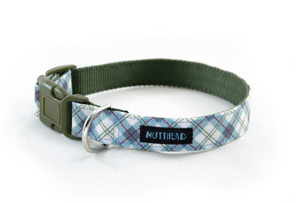 Buckle Dog Collar in Christopher