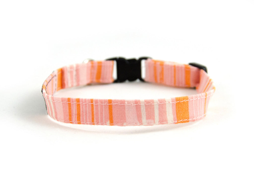 Cat collar in Cloudy