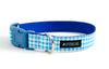 Buckle Dog Collar in Duck (blue) ALMOST GONE!