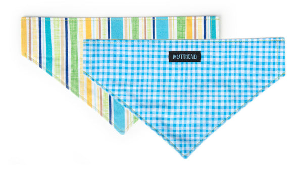 Reversible Bandana in Duck (blue) and Spud