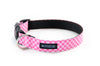 Buckle Dog Collar in Edith (Pink)