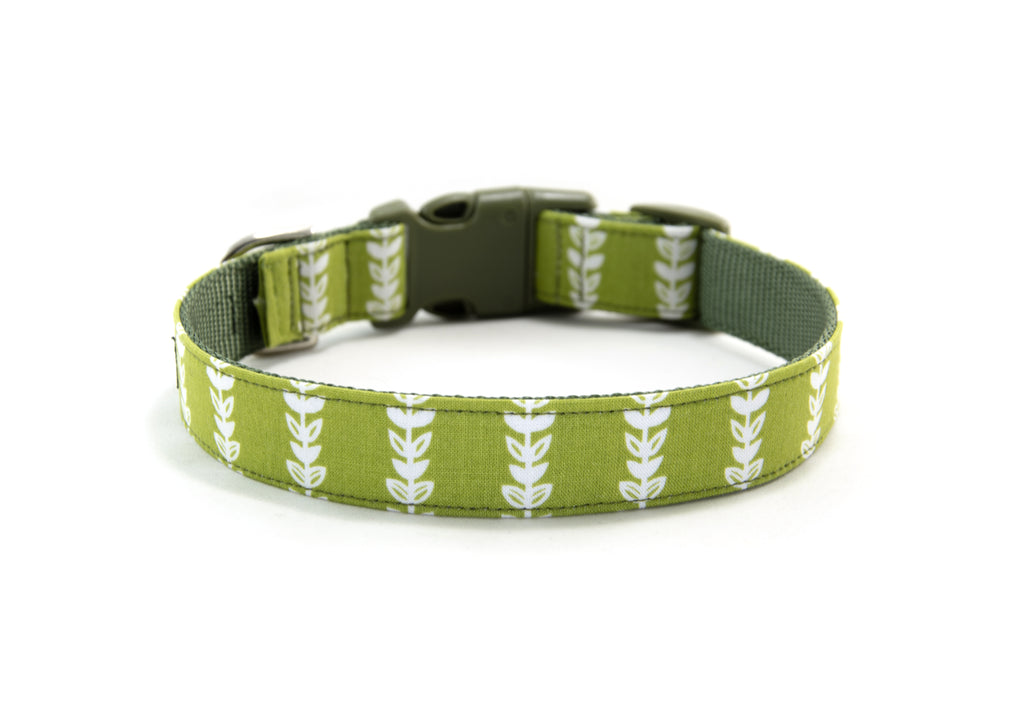 Buckle Dog Collar in Emily
