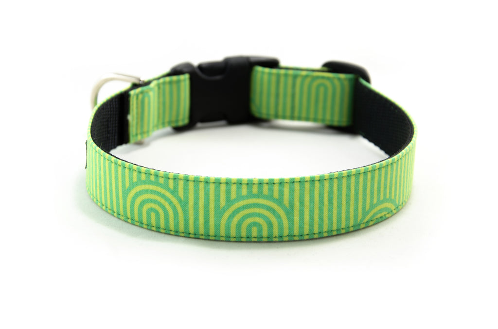 Buckle Dog Collar in Guinness (Green)