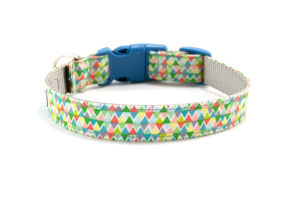 Buckle Dog Collar in Izabella