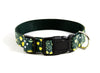 Buckle Dog Collar in Kate