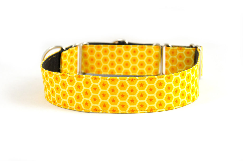 Martingale Collar in Koto