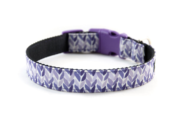 Buckle Dog Collar in Lovey