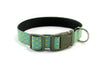 Buckle Dog Collar in Manuka