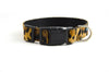 Buckle Dog Collar in Punky
